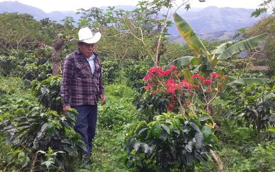 The producers tell us how producing specialty coffee changed their vision